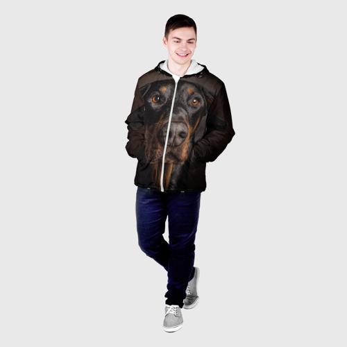 Мужская куртка 3D  Фото 03, Доберман