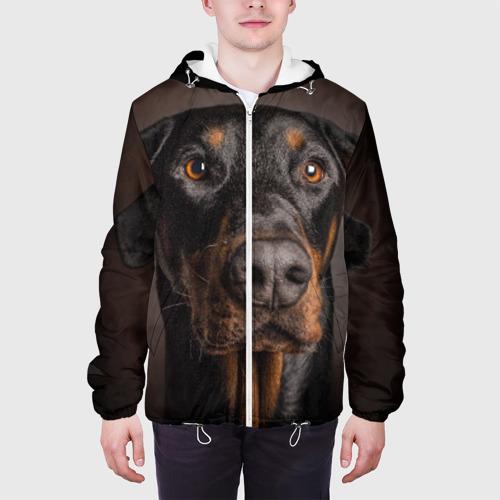 Мужская куртка 3D  Фото 04, Доберман