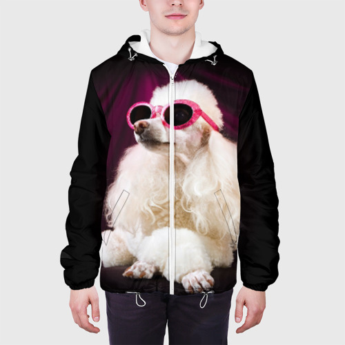 Мужская куртка 3D  Фото 04, Пудель в очках