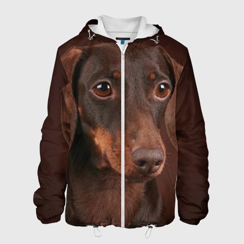 Мужская куртка 3D  Фото 01,  Такса