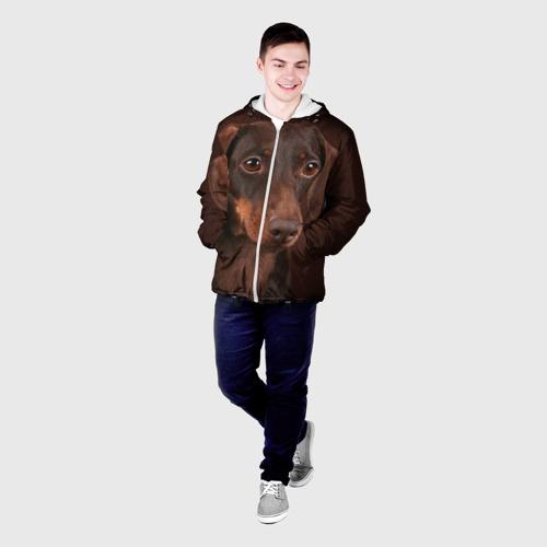 Мужская куртка 3D  Фото 03,  Такса