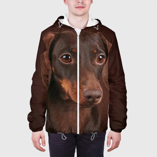 Мужская куртка 3D  Фото 04,  Такса