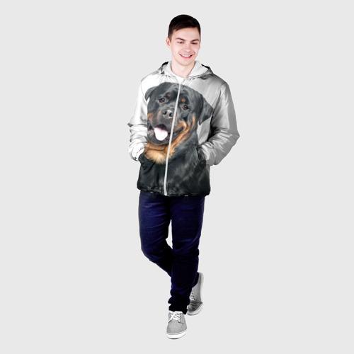 Мужская куртка 3D  Фото 03, Ротвейлер