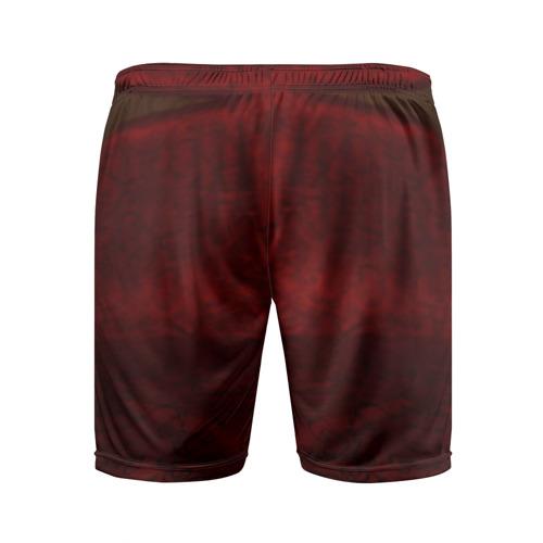 Мужские шорты 3D спортивные  Фото 02, Бассет-хаунд