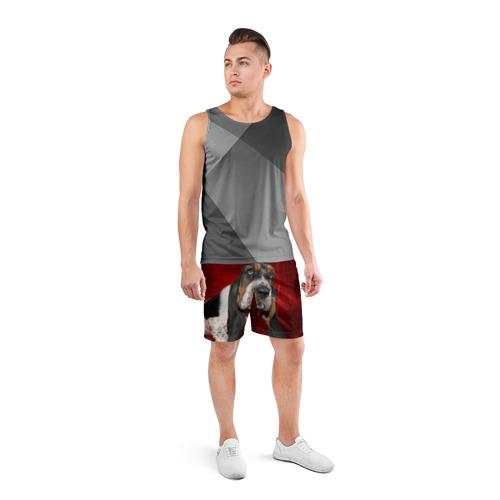 Мужские шорты 3D спортивные  Фото 04, Бассет-хаунд