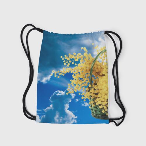 Рюкзак-мешок 3D  Фото 05, Мимозы