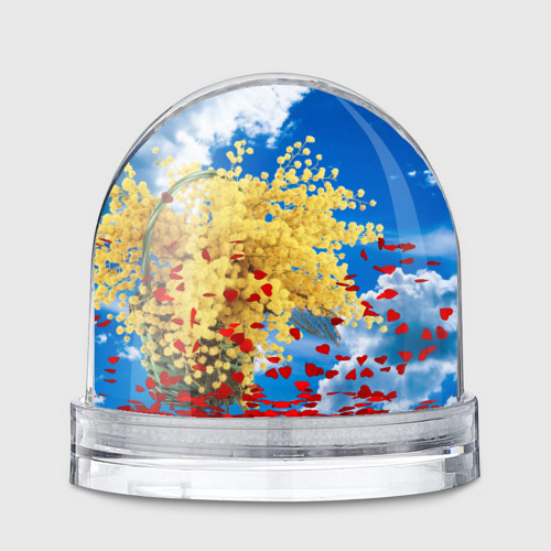 Водяной шар  Фото 01, Мимозы