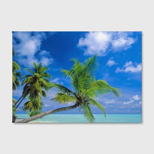 Холст прямоугольный  Фото 02, Пальмы