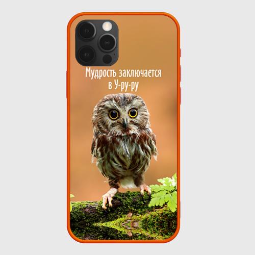 Чехол для iPhone 12 Pro Уруру Фото 01