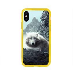 Волк в горах