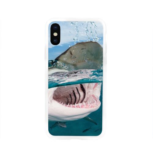 Чехол для Apple iPhone X силиконовый глянцевый  Фото 01, Хищная акула