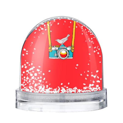 Водяной шар со снегом Фотоаппарат с птичкой