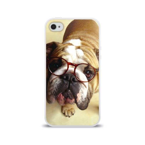 Чехол для Apple iPhone 4/4S силиконовый глянцевый  Фото 01, Бульдог в очках