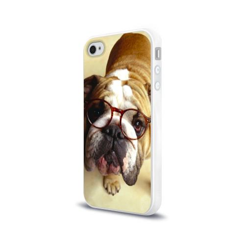 Чехол для Apple iPhone 4/4S силиконовый глянцевый  Фото 03, Бульдог в очках