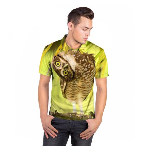 Мужская рубашка поло 3D  Фото 05, Филин