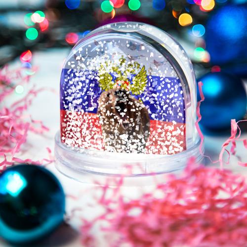 Водяной шар со снегом  Фото 04, Русский медведь и герб