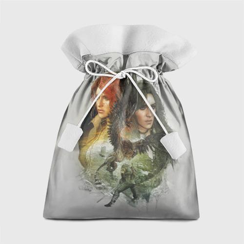 Подарочный 3D мешок Ведьмак Фото 01