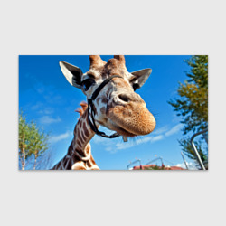 Прикольный жираф