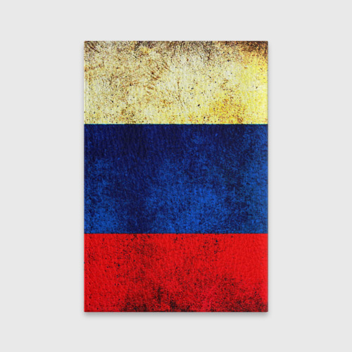 Обложка для паспорта матовая кожа  Фото 02, Триколор