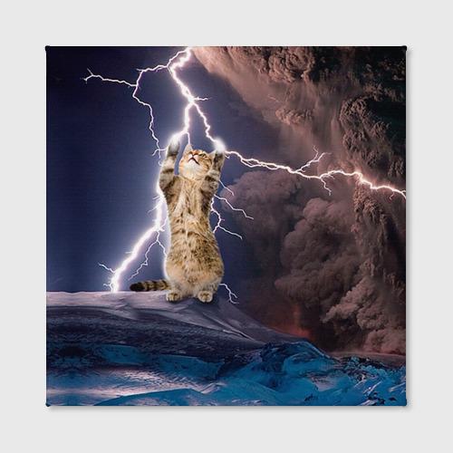 Холст квадратный Кот и молния Фото 01