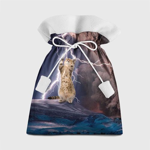 Подарочный 3D мешок Кот и молния