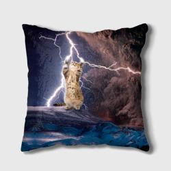 Кот и молния