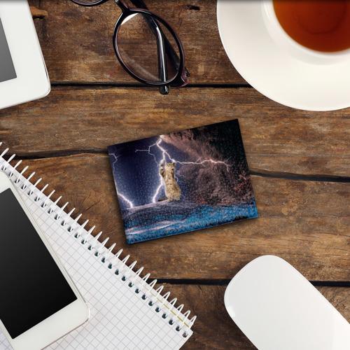 Обложка для студенческого билета Кот и молния Фото 01