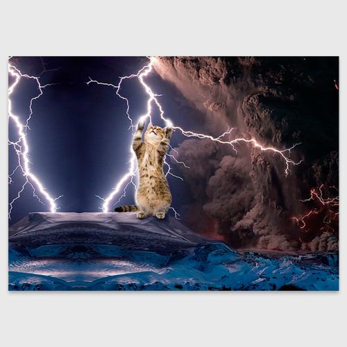 Поздравительная открытка Кот и молния Фото 01