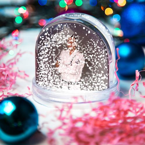 Водяной шар со снегом Грейси Ройс