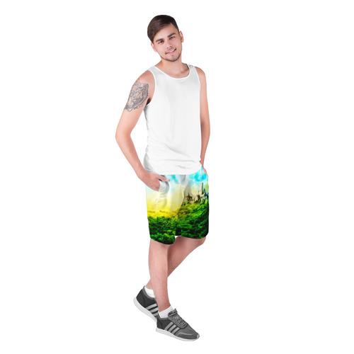 Мужские шорты 3D  Фото 03, Замок