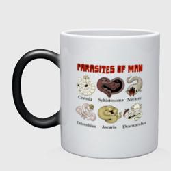 Паразиты человека 2