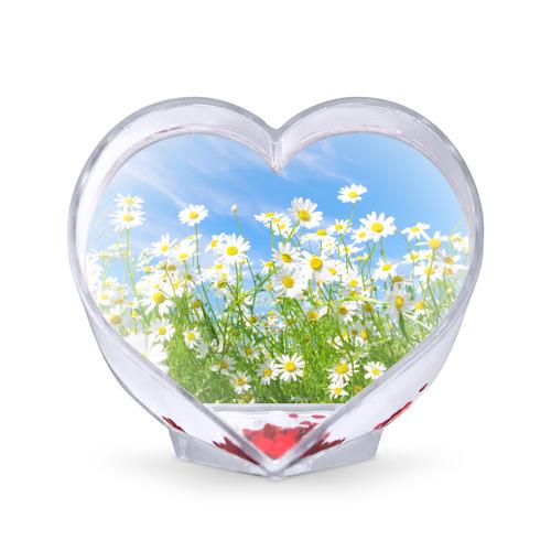 Сувенир Сердце  Фото 01, Ромашки