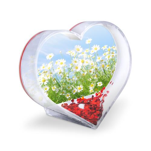 Сувенир Сердце  Фото 03, Ромашки