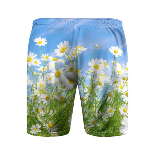 Мужские шорты спортивные Ромашки Фото 01