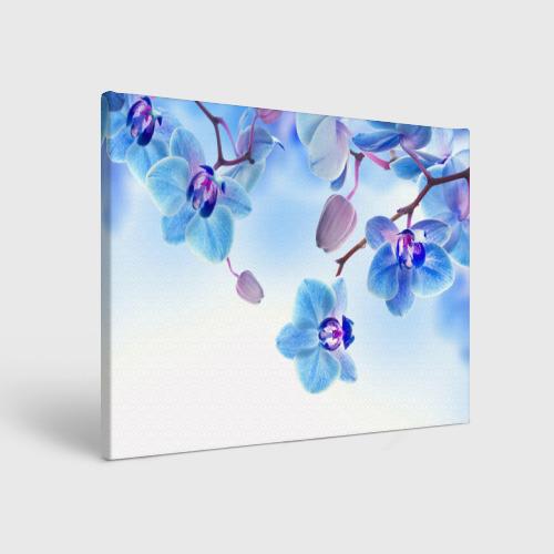 Холст прямоугольный Голубая орхидея Фото 01