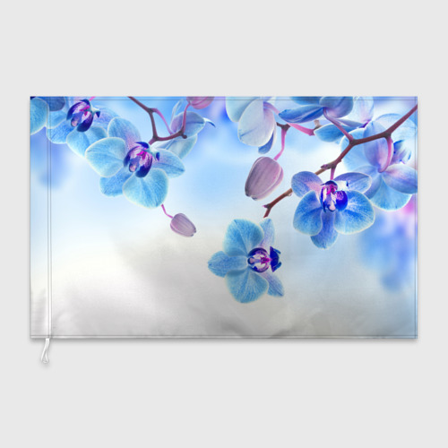 Флаг 3D Голубая орхидея Фото 01