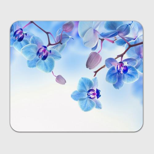 Коврик для мышки прямоугольный Голубая орхидея Фото 01