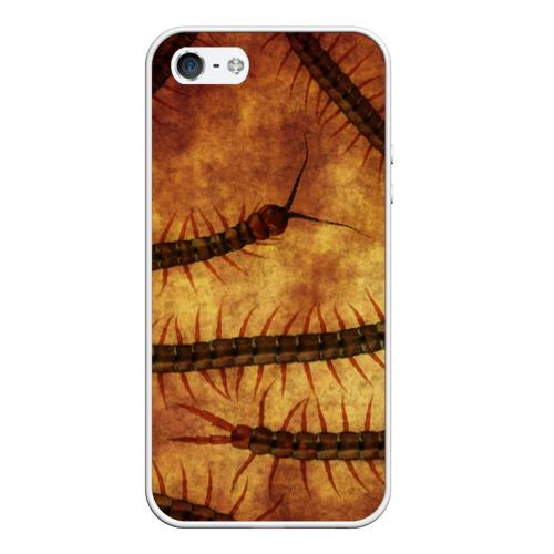 Чехол силиконовый для Телефон Apple iPhone 5/5S Сколопендра от Всемайки