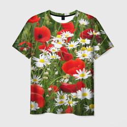 Полевые цветы 2