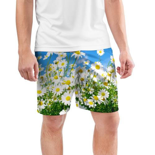 Мужские шорты 3D спортивные  Фото 03, Полевые цветы 7