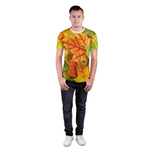 Мужская футболка 3D спортивная  Фото 04, Краски осени