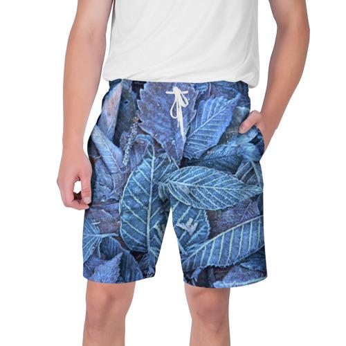 Мужские шорты 3D  Фото 01, Застывшие листья
