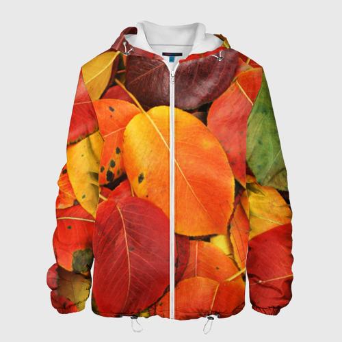 Мужская куртка 3D  Фото 01, Осенний покров