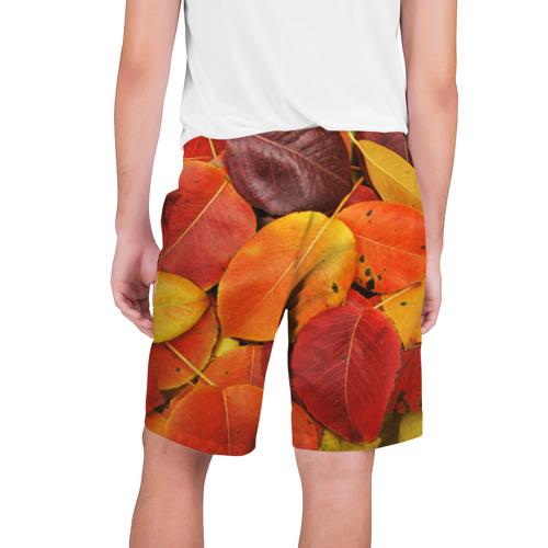 Мужские шорты 3D  Фото 02, Осенний покров