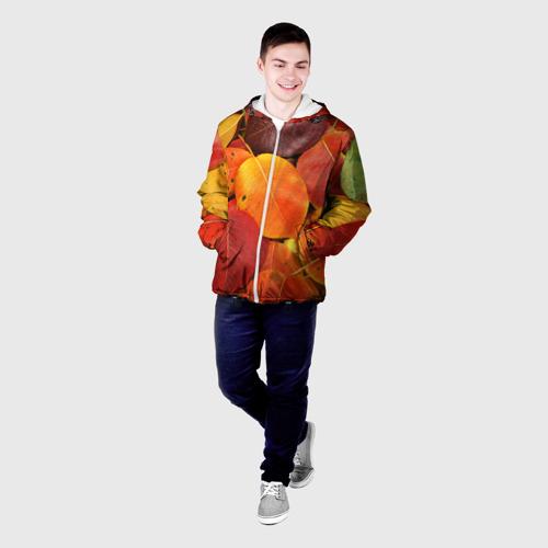 Мужская куртка 3D  Фото 03, Осенний покров