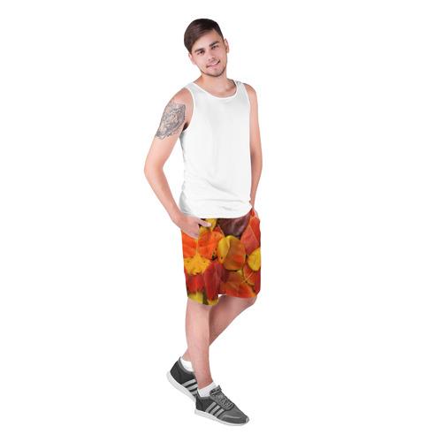 Мужские шорты 3D  Фото 03, Осенний покров