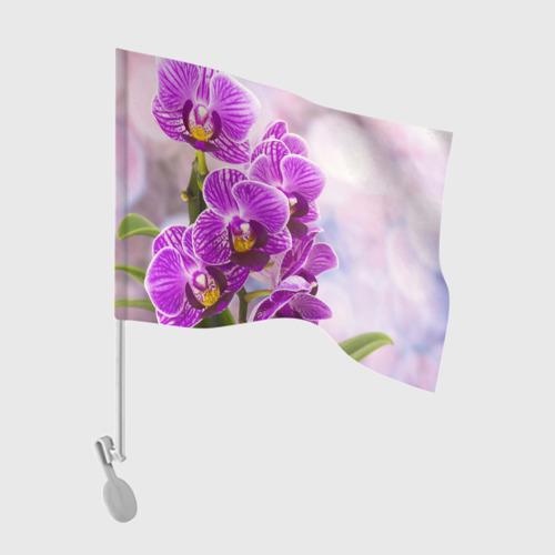 Флаг для автомобиля Божественная орхидея Фото 01