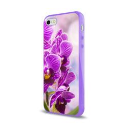 Божественная орхидея