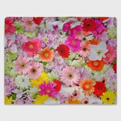 Обилие цветов