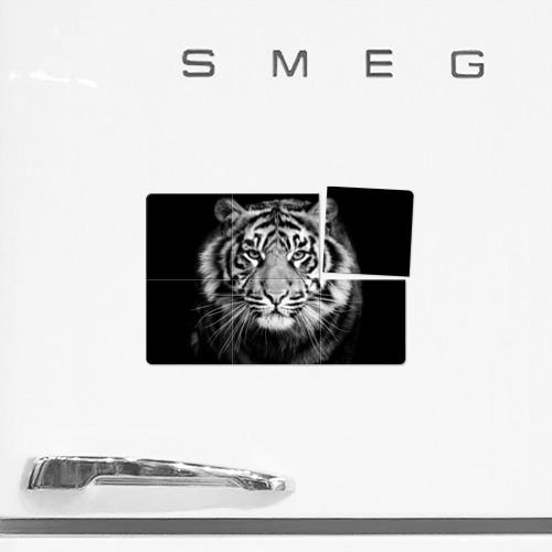 Магнитный плакат 3Х2 Красавец тигр Фото 01